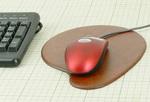 マウスうるし1.jpg